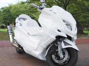 大学生 人気バイク