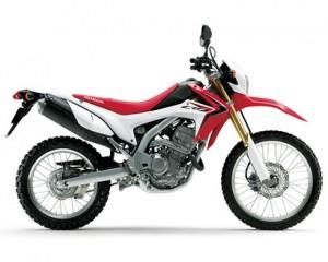 中型バイク 選び方